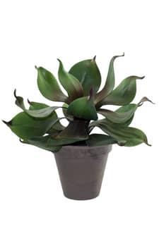 Künstliche Echeveria im Topf 35 cm