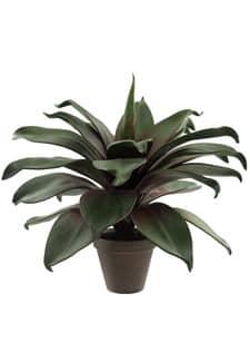 Künstliche Echeveria Grünpflanze im Tontopf 50 cm
