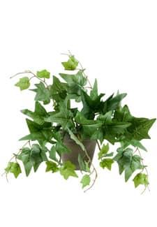 Künstliche Efeu Rankpflanze im Topf 30/50  cm