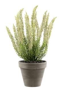 Künstliche Erika Pflanze weiß 34 cm