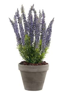 Künstliche Erika Pflanze lavendel 34cm im Tontopf