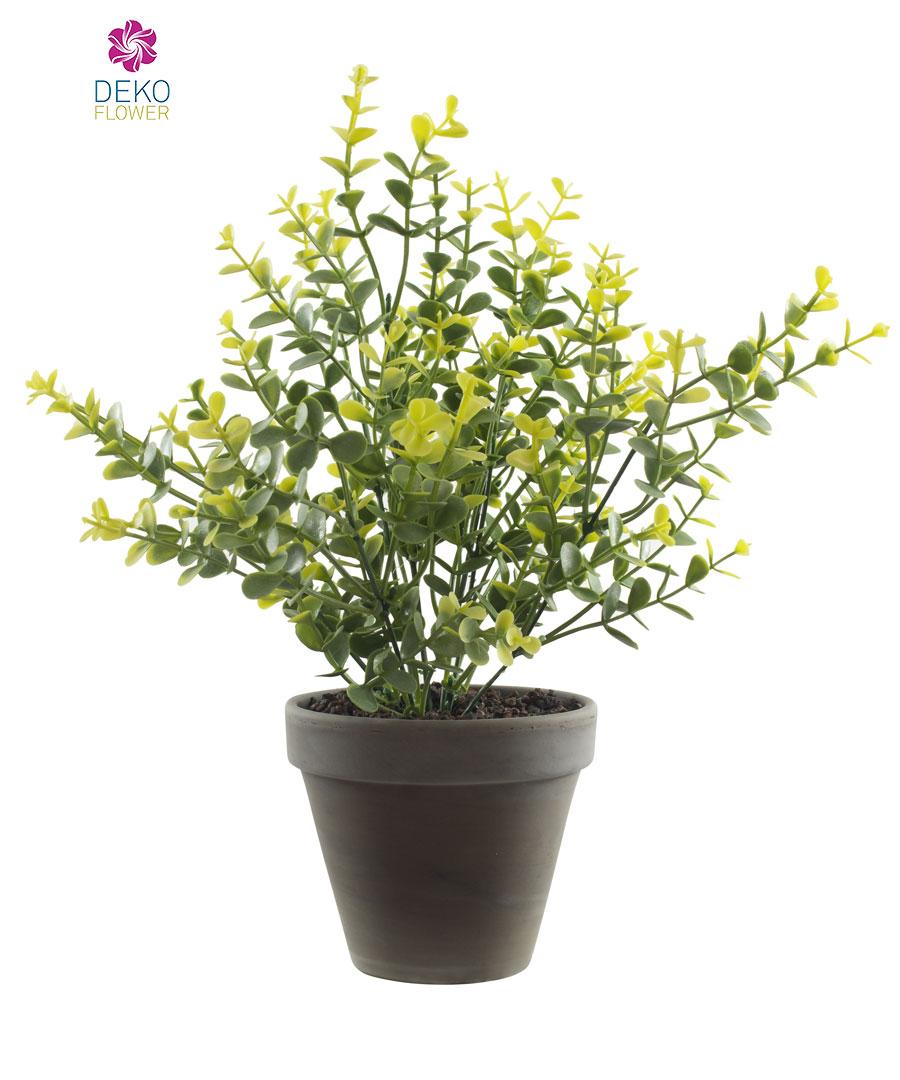 Künstliche Eukalyptus Pflanze 29 cm grün