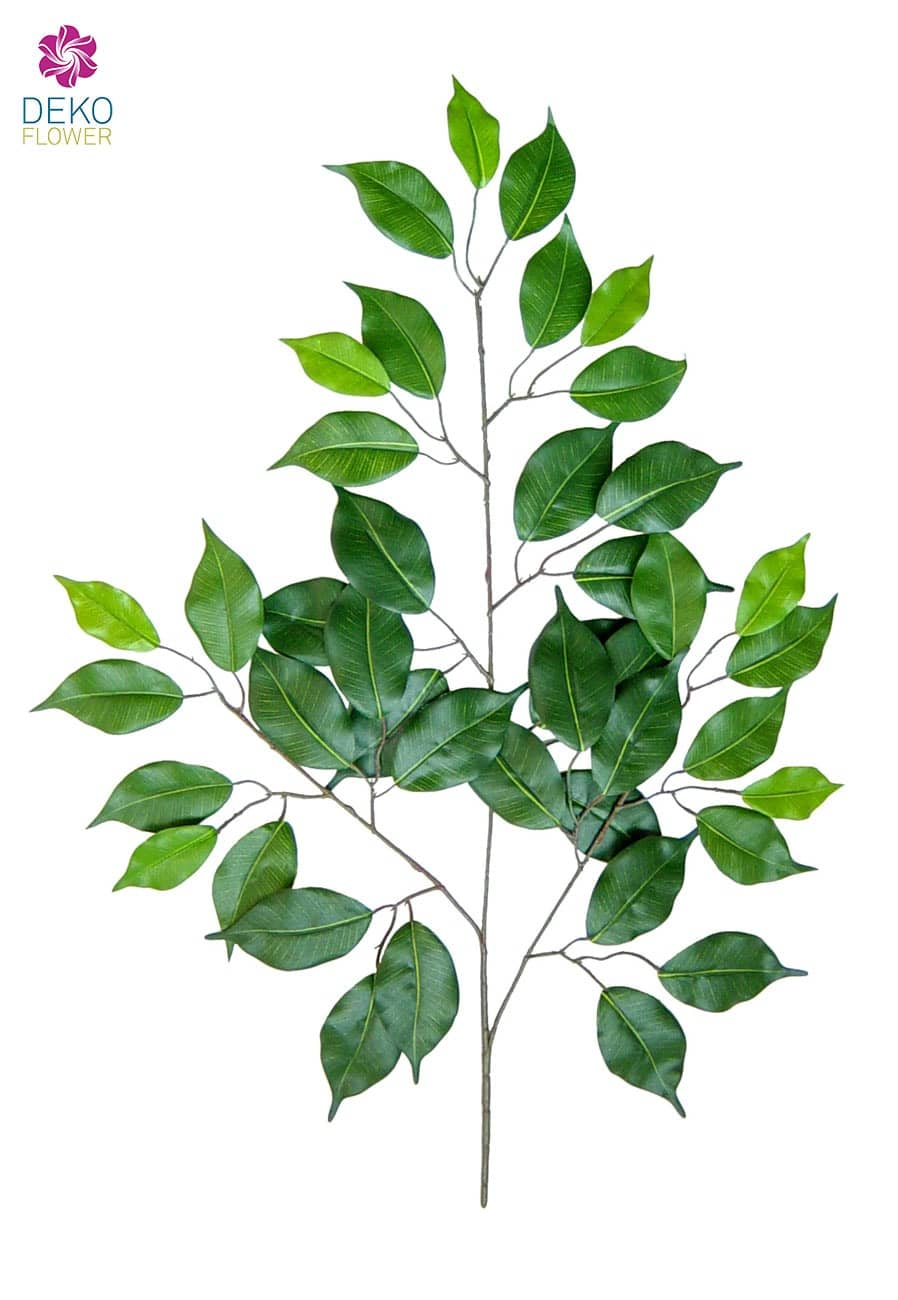 Künstliche Ficus Zweige grün, 12er