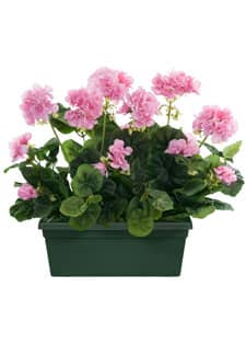 Künstliche Geranien im Kasten 40/30 cm rosa