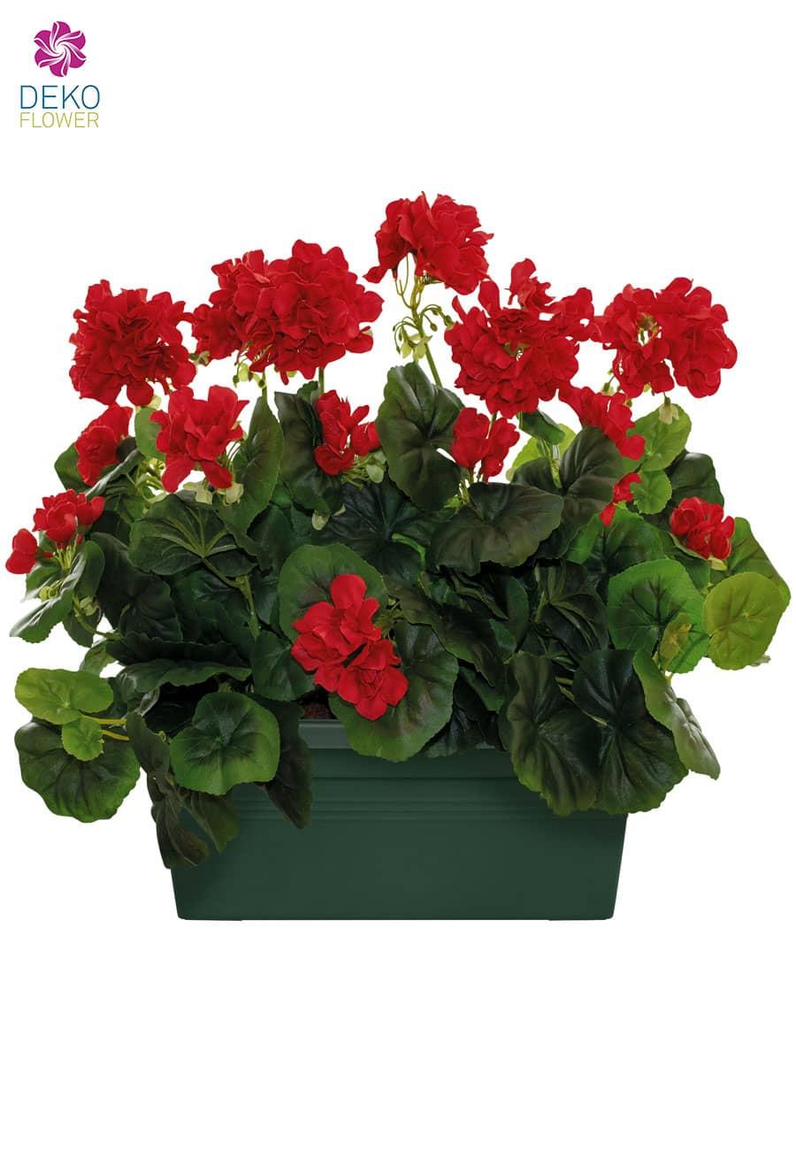 Künstliche Geranien im Blumenkasten 40/30 cm rot