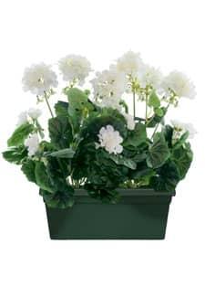 kunstpflanzen kunstgr ser k nstliche orchideen. Black Bedroom Furniture Sets. Home Design Ideas