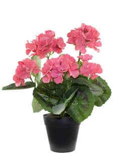 Künstliche Geranien rosa 30 cm im Topf