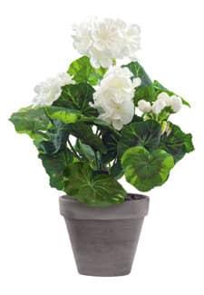 Künstliche Geranien Topfblumen weiß 33 cm