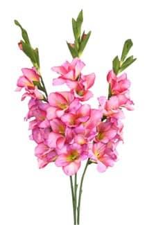 Künstliche Gladiolen pink 95 cm 3er-Set
