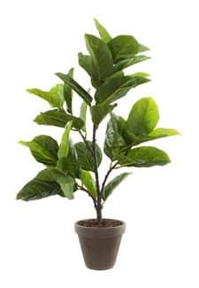 Künstliche Gummibaum Pflanze 70 cm