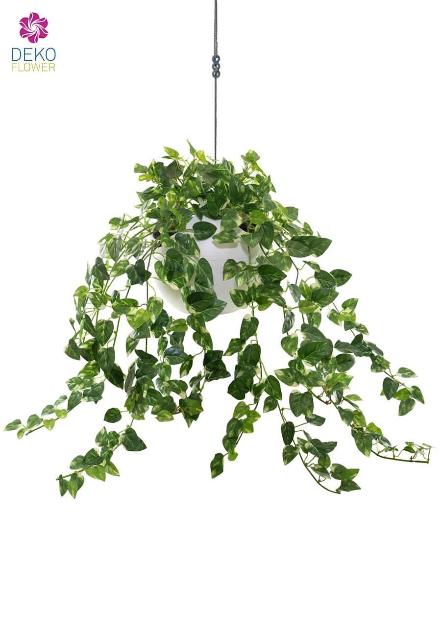 Künstliche Hängerpflanze Pothos in Ampel 65 cm