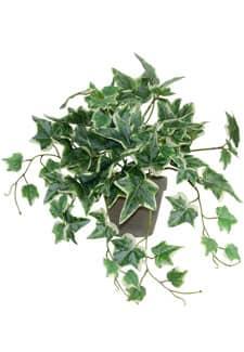 Künstliche Holland Efeu Rankpflanze im Topf 29 cm