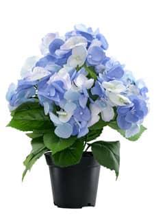 Künstliche Hortensien blau 36 cm