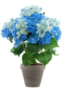 Hortensien Kunstblumen blau 47 cm im Topf