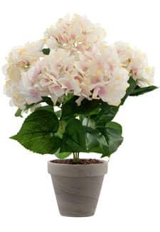 Hortensien Kunstpflanze weiß rosa 47 cm im Topf