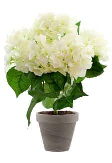 Hortensien Kunstblumen weiß 47 cm im Topf