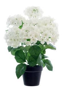 Künstliche Hortensien weiß 56 cm getopft