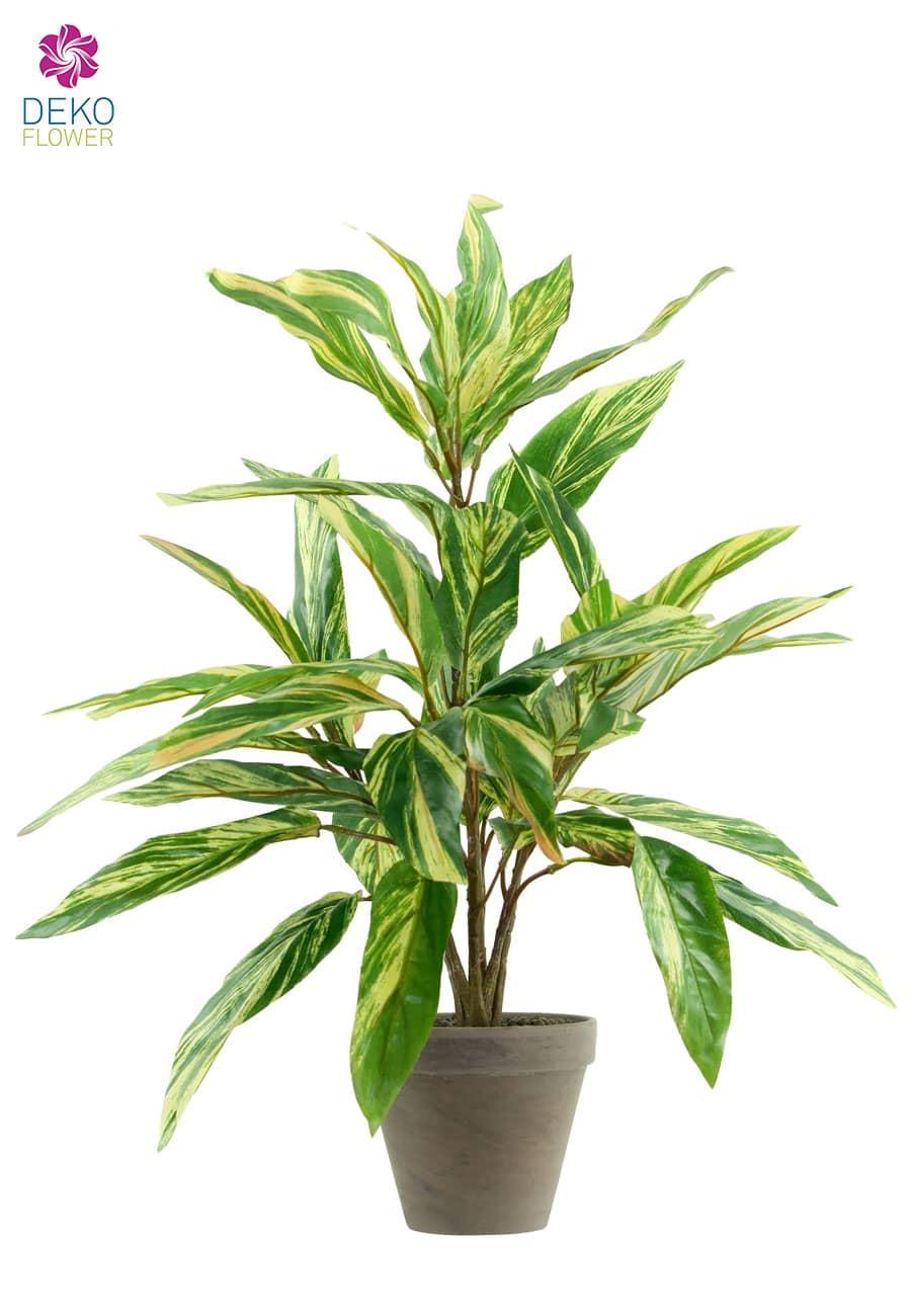 Hosta Kaleidochrome Kunstpflanze im Tontopf 60 cm gelb grün