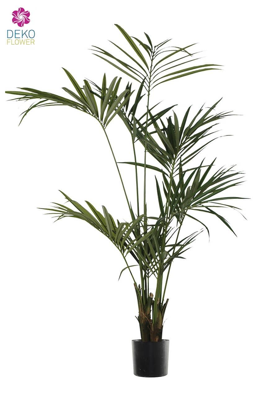Künstliche Kentia Palme 200 cm