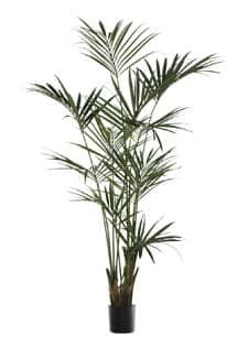 Künstliche Kentia Palme grün 235 cm