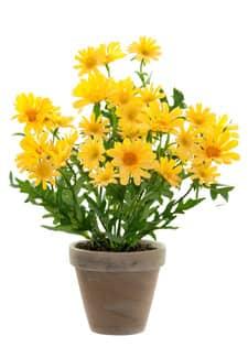 Künstliche Margeriten Topfblumen gelb 39 cm