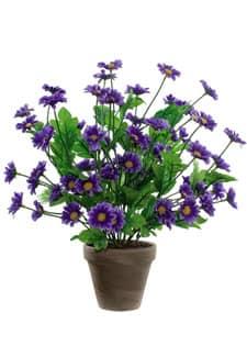 Margeritenbusch violett 42 cm