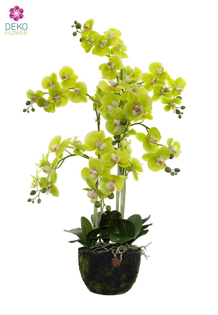 Künstliche Orchidee 110 cm grün in Erdballen