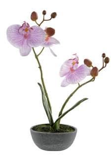 Künstliche Orchidee 25 cm rosa in Schale