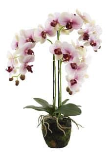 Künstliche Orchidee 65 cm altrosa in Erdballen