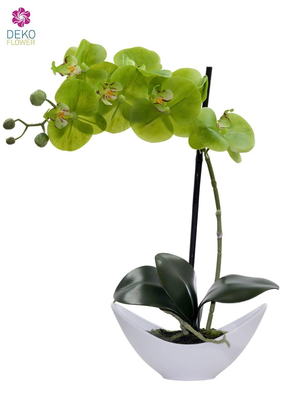 Künstliche Orchidee apfelgrün 42cm in weißer Schale