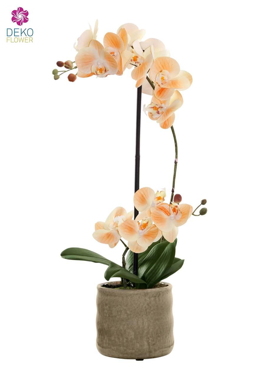 Künstliche Orchidee apricot 53cm in Keramikschale