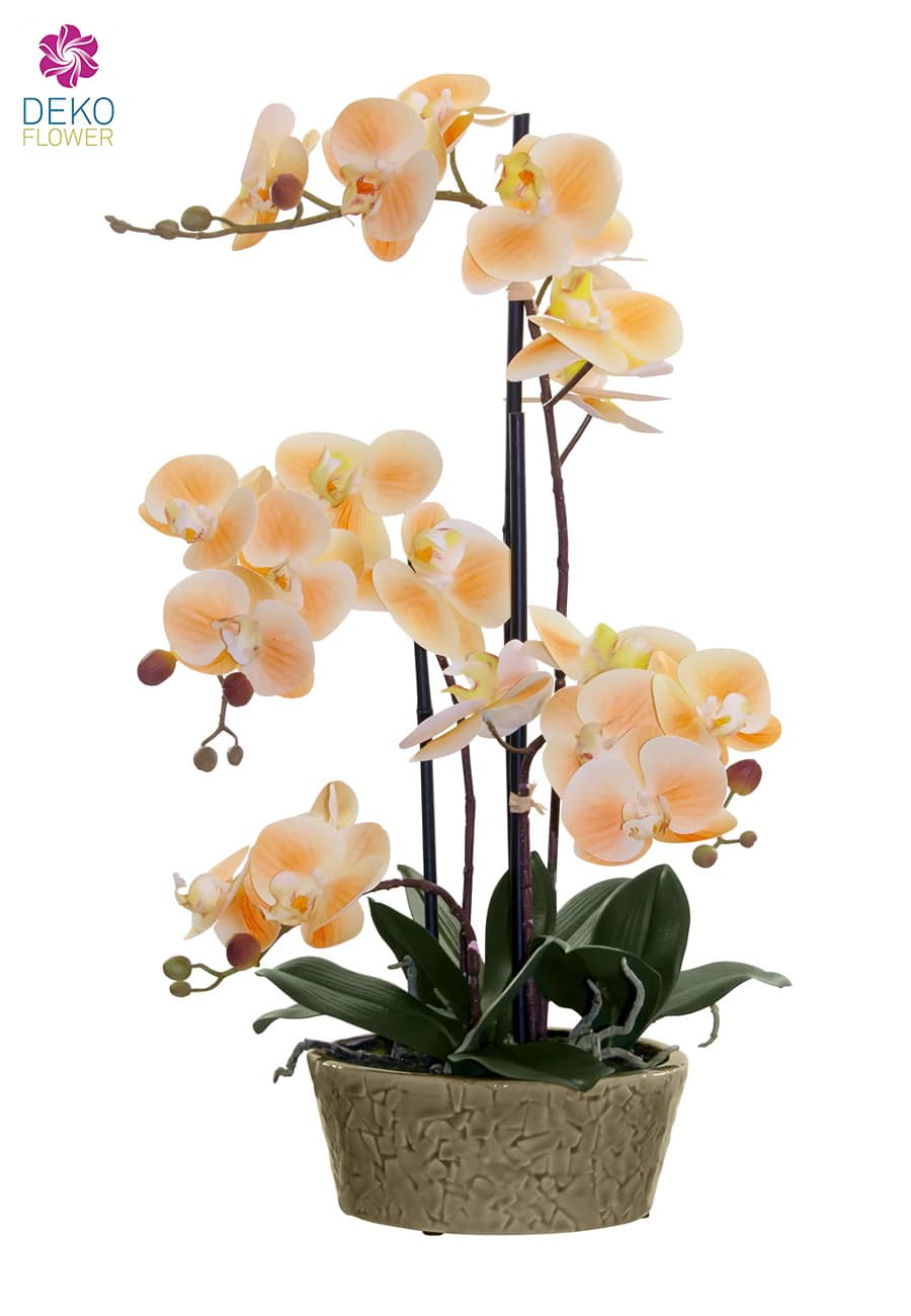Kunst Orchidee apricot 53 cm in Deko Schale