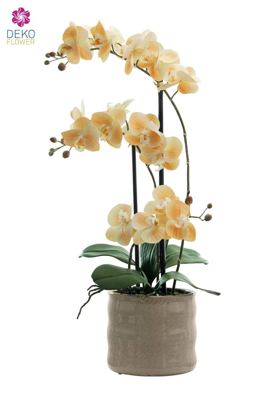 Künstliche Orchidee apricot 58cm in Keramikschale