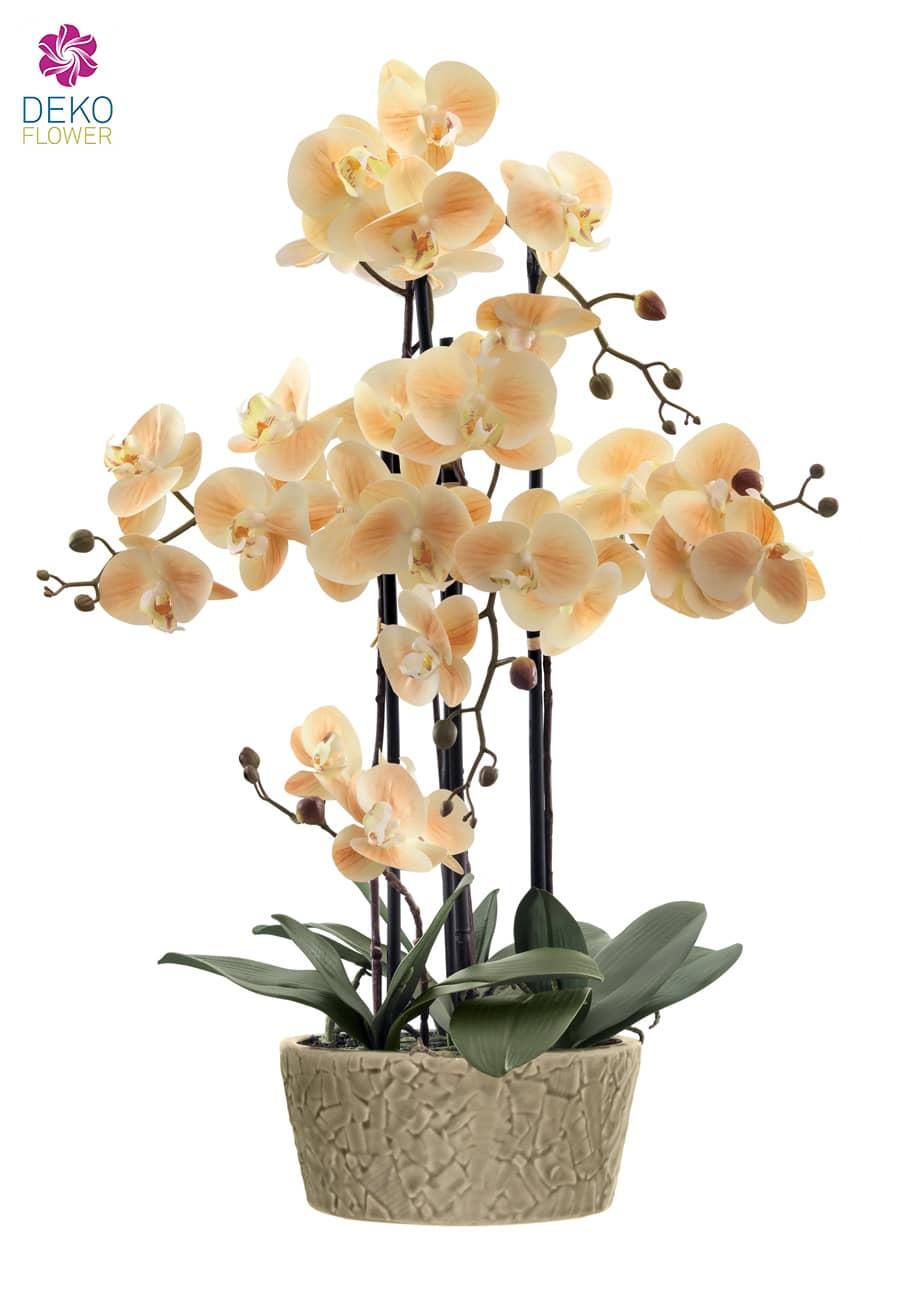 Kunst Orchidee in Schale apricot 64 cm