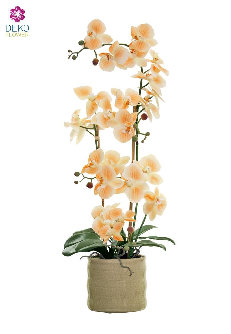 Kunstorchidee apricot 70 cm im Keramik Topf