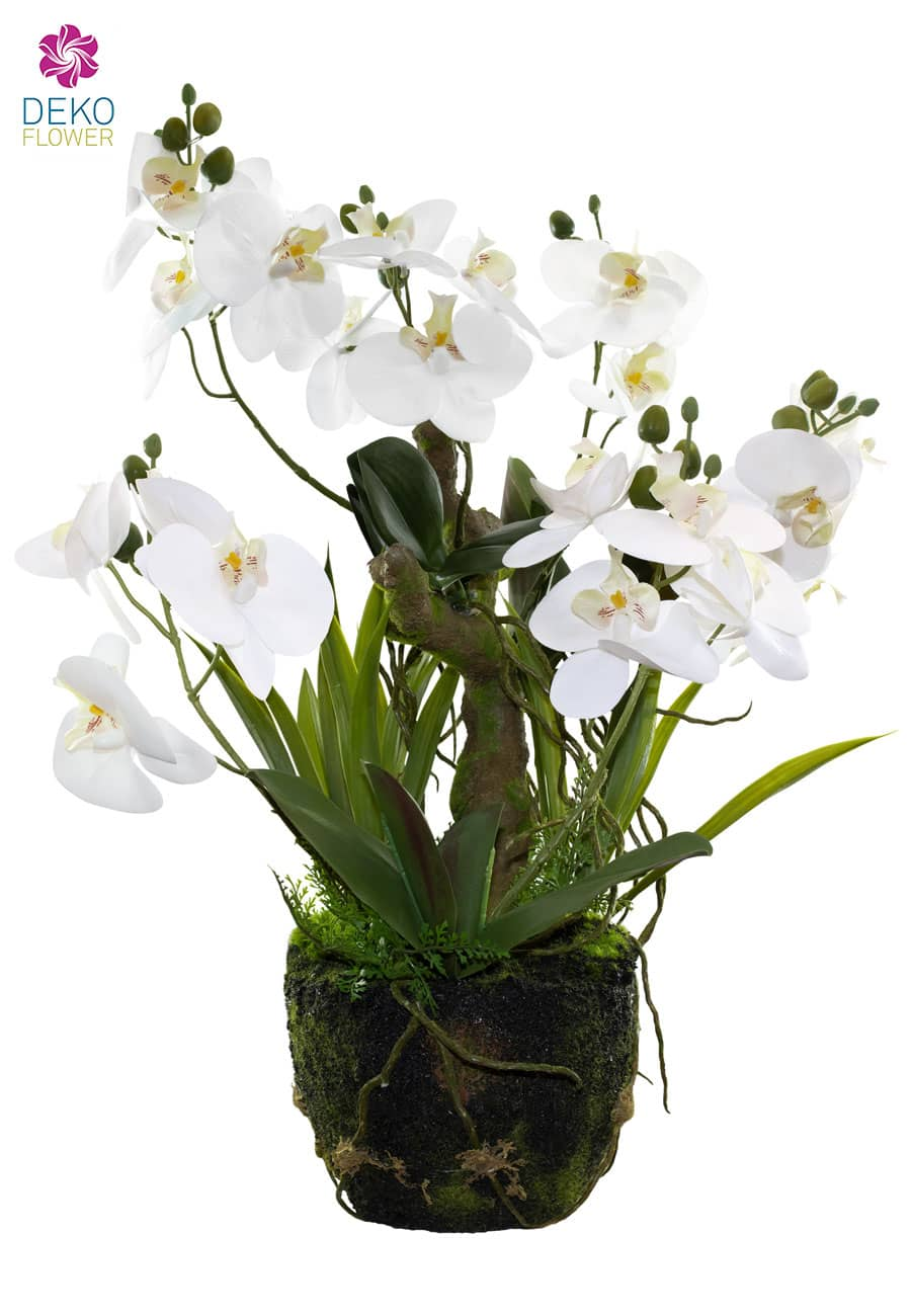 Künstliche Orchidee auf Baumwurzel weiß 63 cm