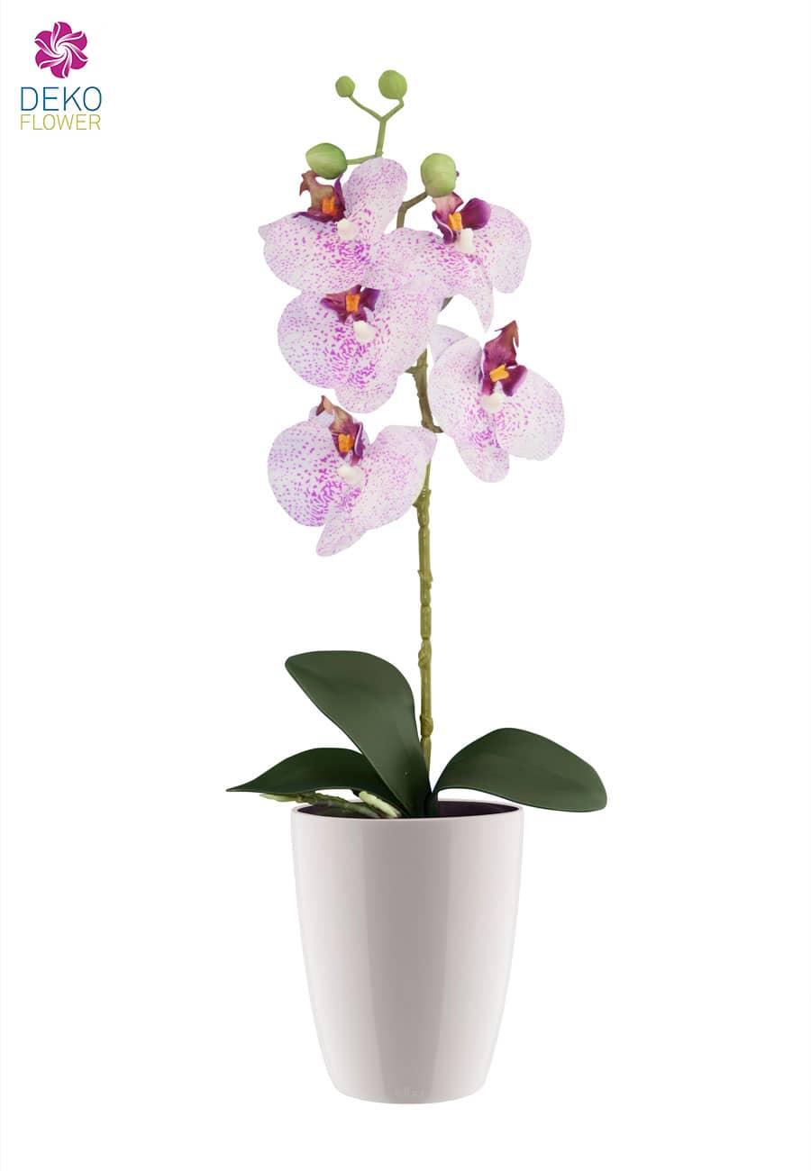 Künstliche Orchidee weiß pink in weißem Übertopf 45 cm