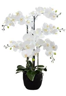 Künstliche Orchidee mit Erdballen 89 cm weiß