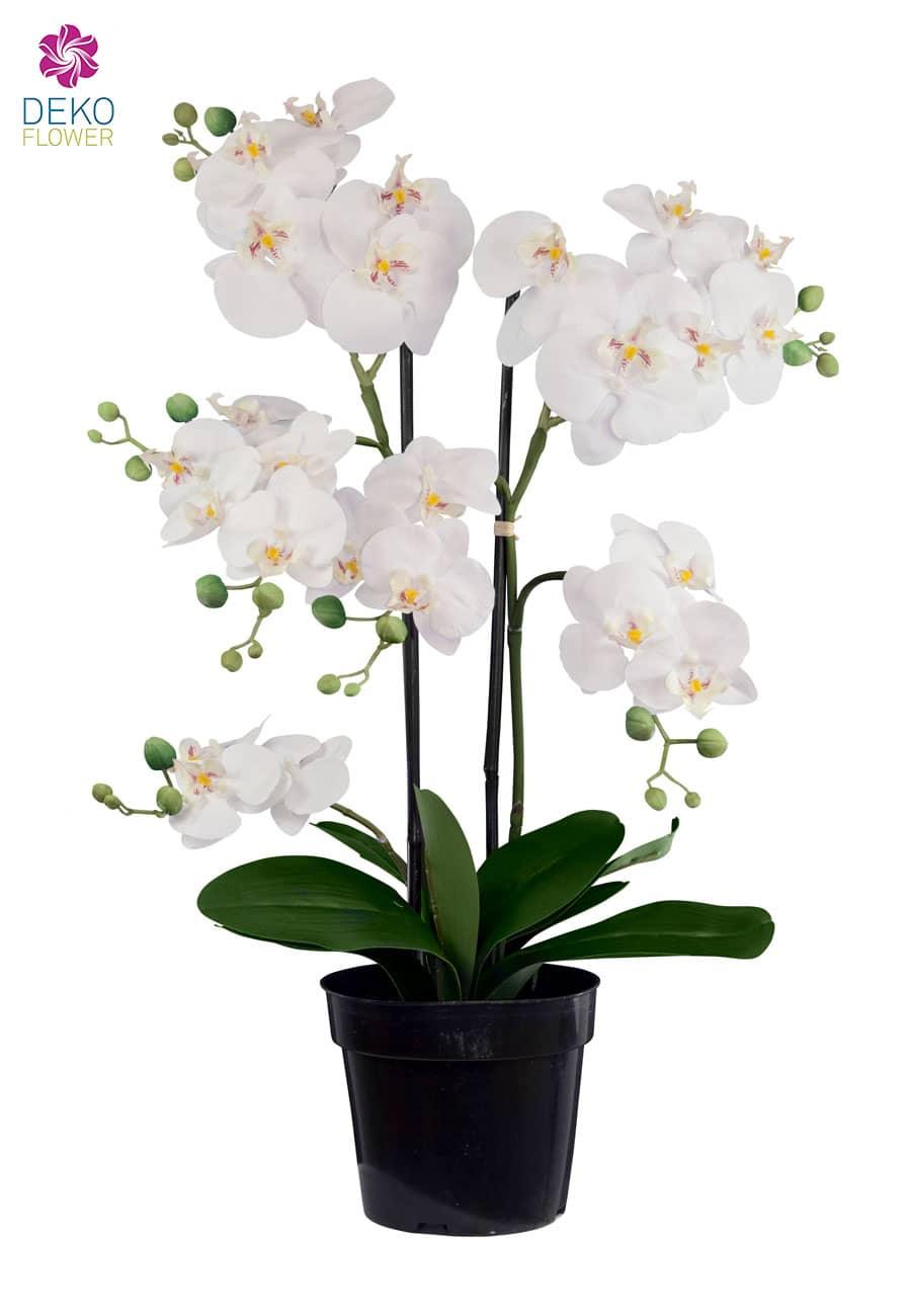 Künstliche Orchidee getopft 76 cm weiß