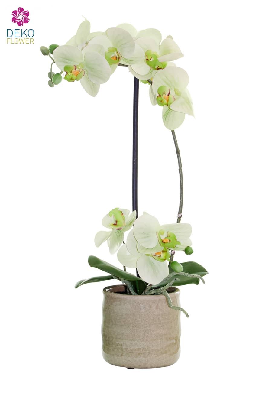 Künstliche Orchidee grün 43 cm in Keramikschale