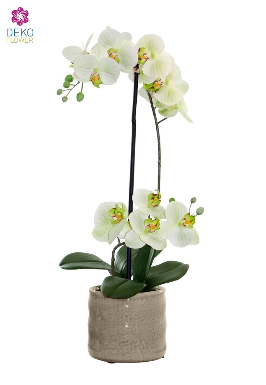 k nstliche orchidee gr n 53cm in keramikschale. Black Bedroom Furniture Sets. Home Design Ideas