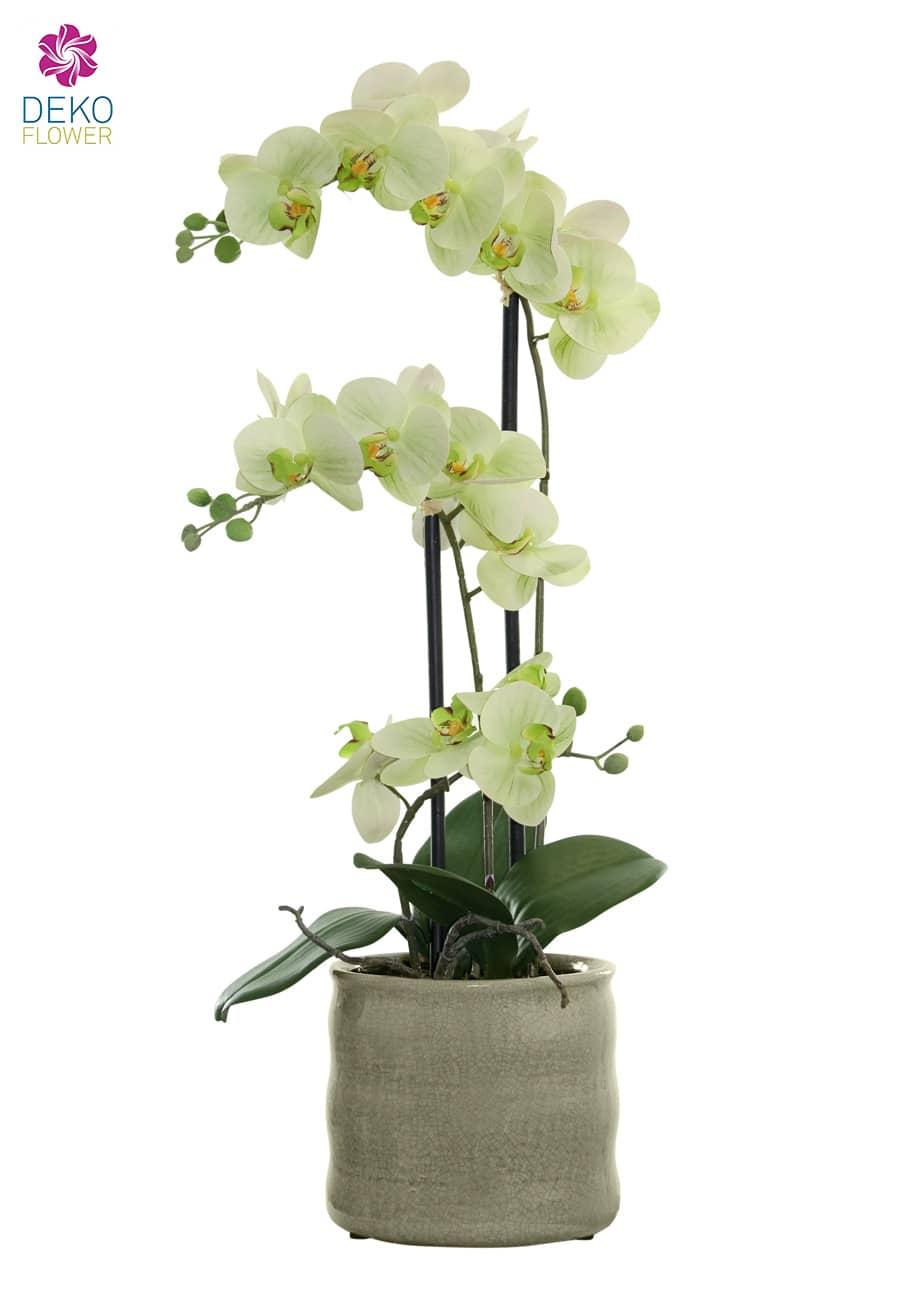Künstliche Orchidee grün 58cm in Keramikschale