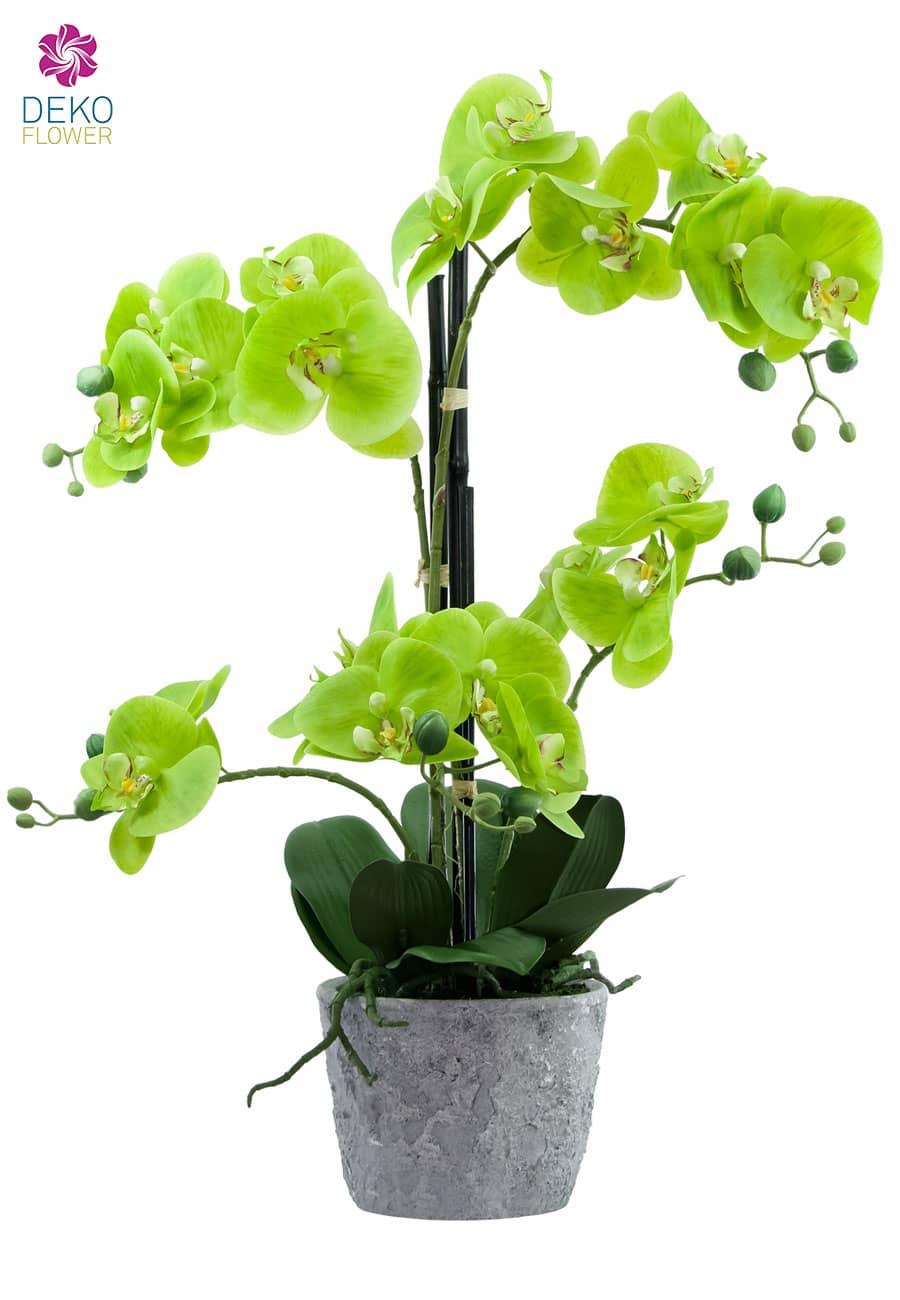 Künstliche Orchidee 60 cm grün
