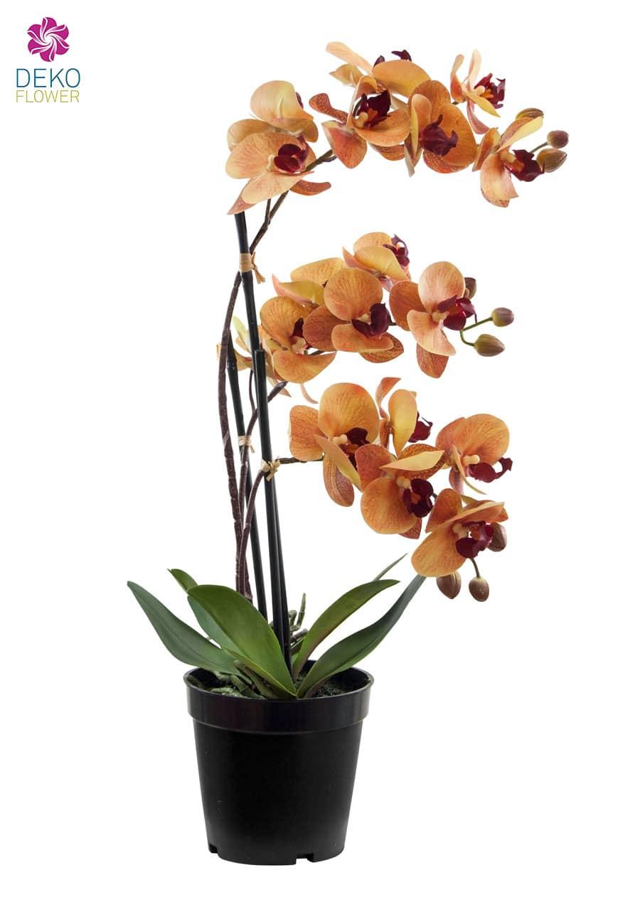 Künstliche Orchidee im Topf orange rot 48 cm