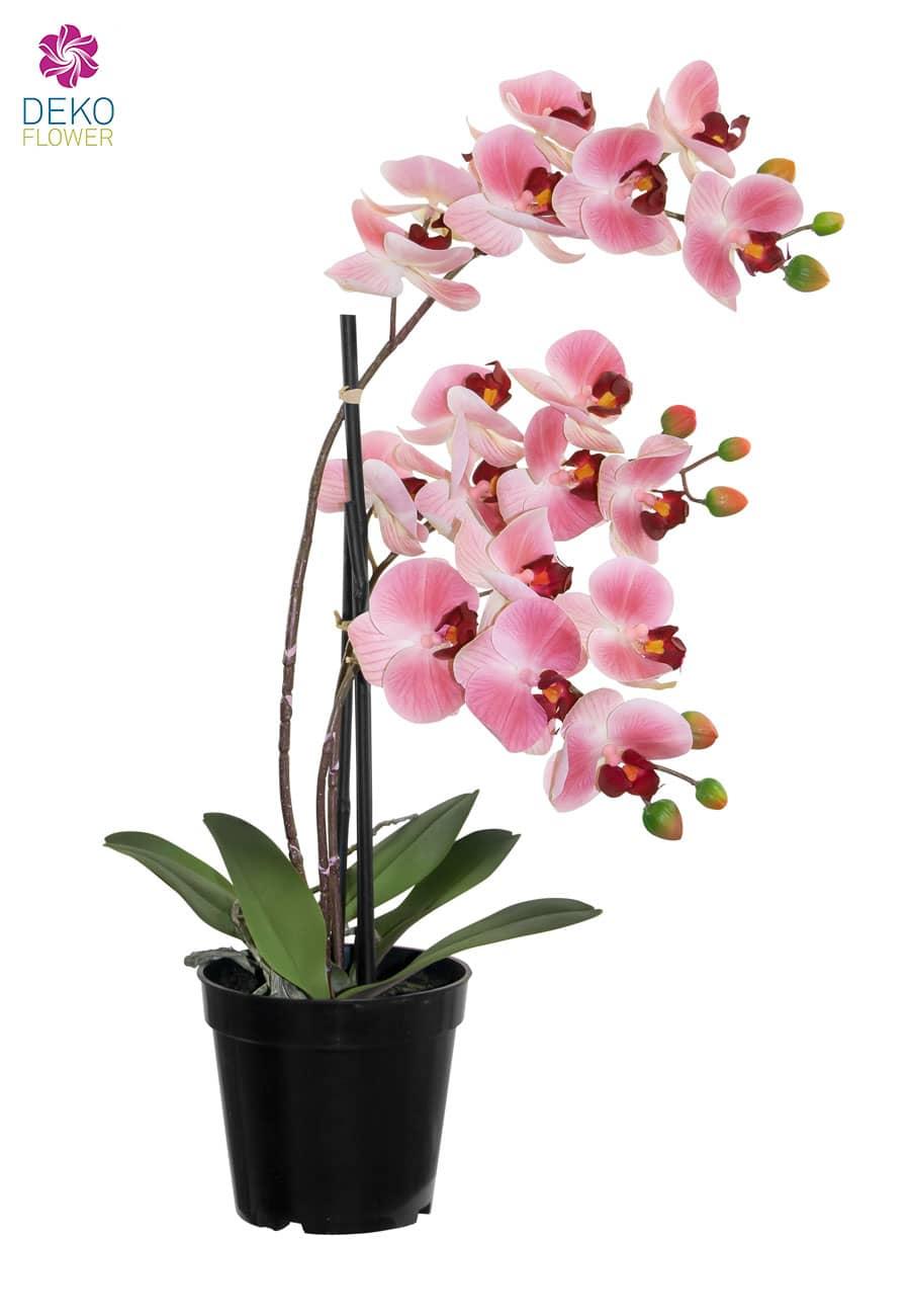 Künstliche Orchidee im Topf rosa 48 cm