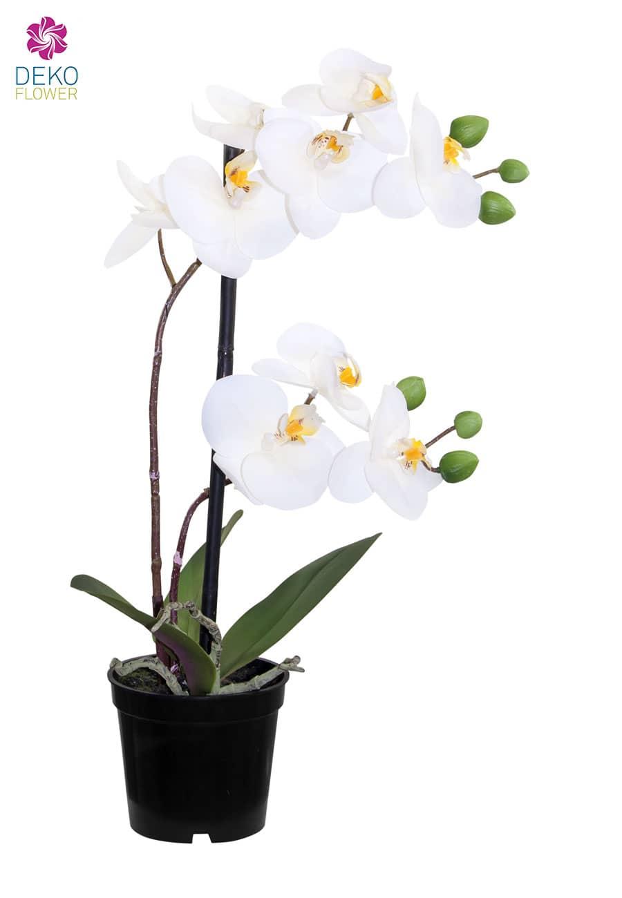 Künstliche Orchidee im Topf weiß 36 cm