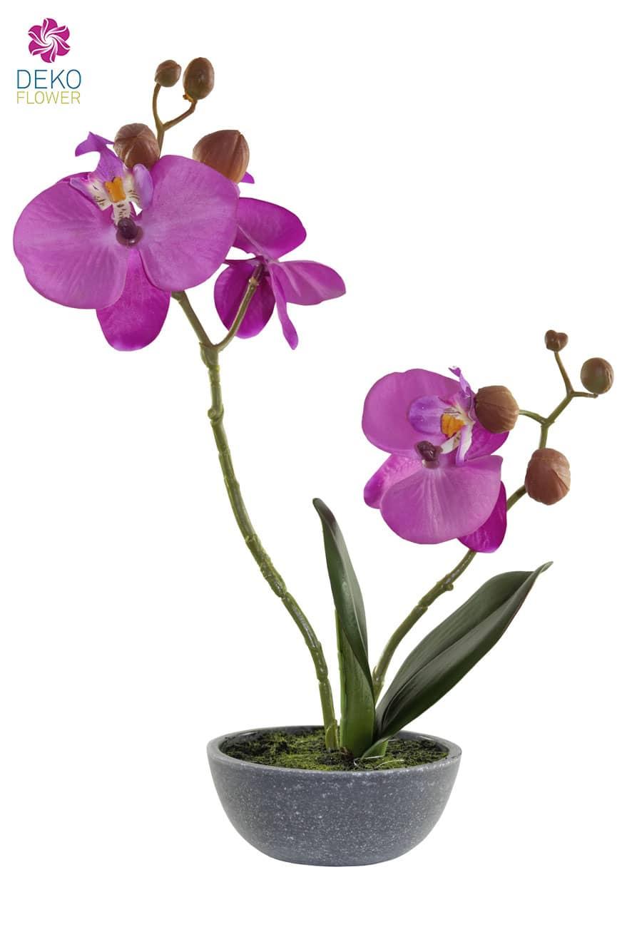 Künstliche Orchidee in Schale lavendel 25 cm