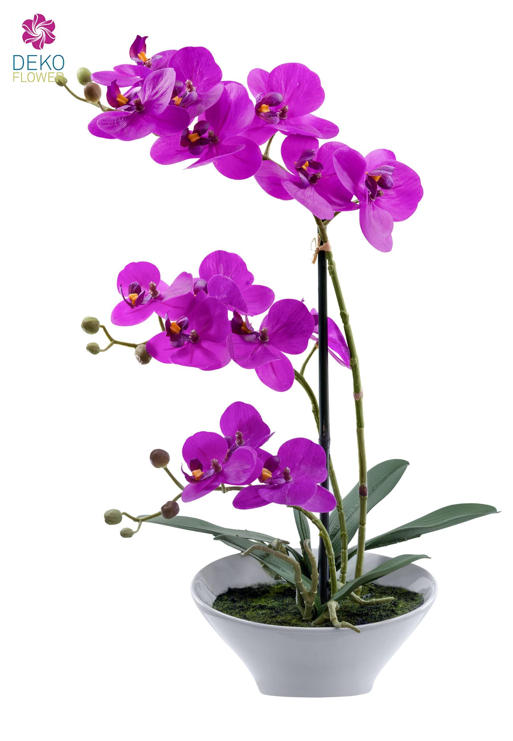 Künstliche Orchidee lavendel 44cm im weißer Keramik Schale