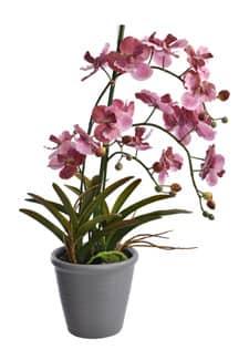 Künstliche Orchidee mit Keramiktopf pink 62 cm