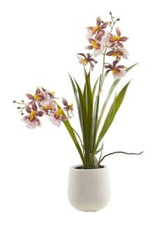 Künstliche Orchidee Oncidium 38 cm in Schale